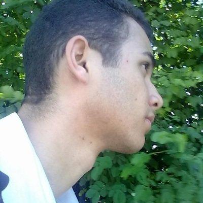 Ulysses Alves