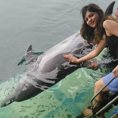 Ankita Shukla