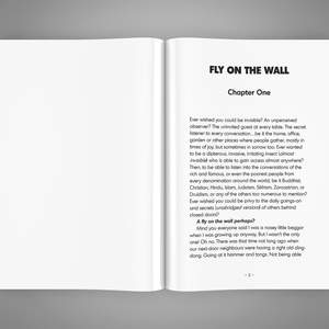 FlyOnTheWall_Spread1.png