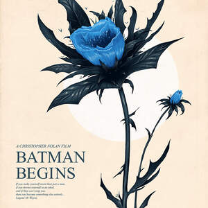 batman-begins-poster-art-doaly.jpg