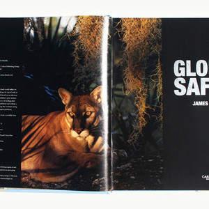 Global_1.jpg