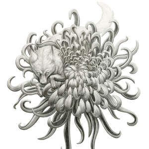 Wolf_and_Chrysanthemum_Shawn_E_Russell_copy.jpg