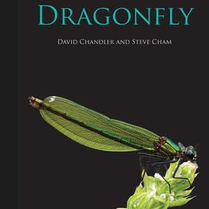 Dragonfly_Cover.jpg