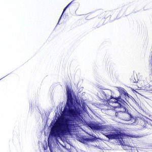 wing_detail.jpg