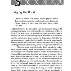 Bridging_the_Bond_TXT_Sample_Page_20.jpg