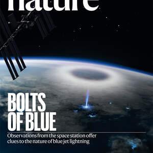 nature_illustration_cover.jpg