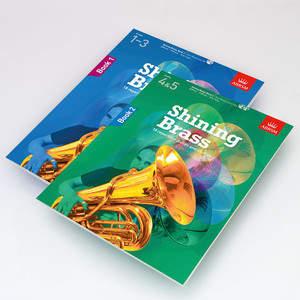 _shining_brass_portfolio_desktop.jpg