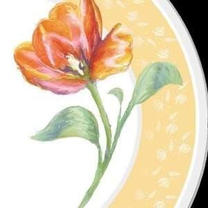 platedesign10.jpg