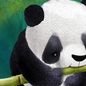 panda-final-art-04-01.jpg