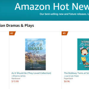 Hit #1 on Amazon Hot New Releases - Shawna James