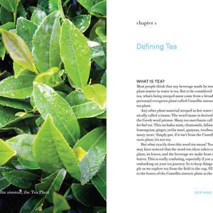 Tea_INT_v13-13.jpg