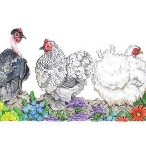 trio-of-chicks.jpg