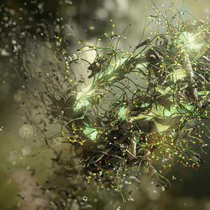 Adaptation-Nature-Art-By-Jeff-Huang.jpg