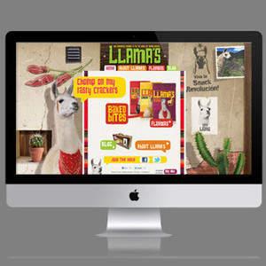 llamaSnacks_n.jpg