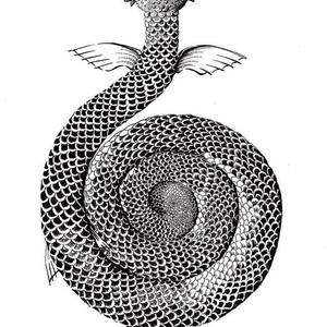 ADA-AWAKE---_WEB_-dark-lane-anthology-sally-barnett-illustrator-bath-frome-bristol-london-illustration.jpg