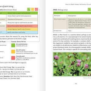 herbs-04.jpg