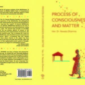 process_of_consciousness.jpg