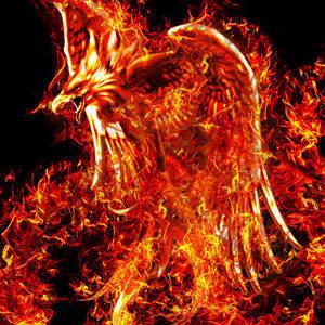 Firebird6.jpg