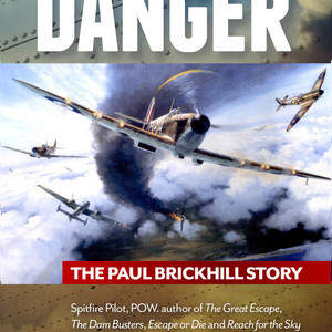 Flyer_into_Danger_cover.jpg