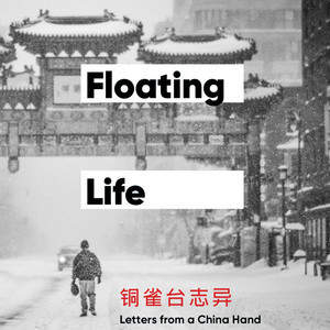 Floating_Life_cover_ideas7.jpg