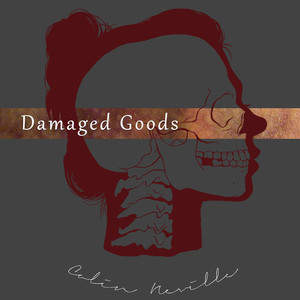 Damaged_Goods2_-_silhouette.jpg