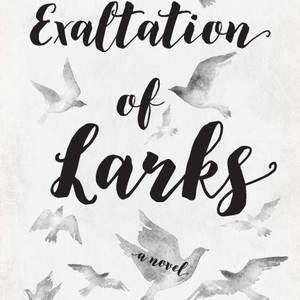 larks-titlepage.jpg