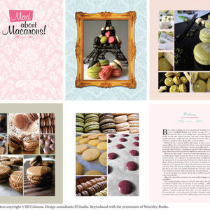 mad-about-macarons-samples.jpg
