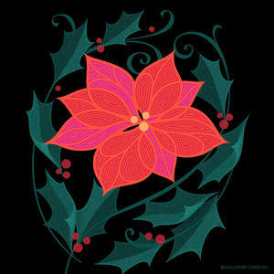 poinsettia-4.save-for-web.490kb-optimized.round-_-square.jpg