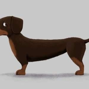 sausage_dog_lo.jpg
