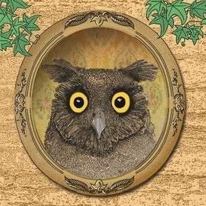 Album-cover-design-owl-surprise-web-based_illustration_and_design_by_Sally_Barnett_Illustrator_Designer_Frome_Bath_Bristol.jpg