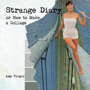 Strange_Diary_FC.jpg