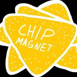 chip-magnet.png