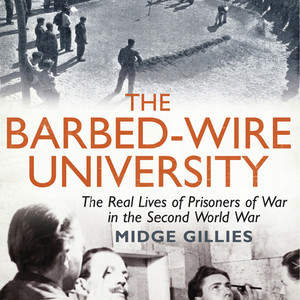 Barbed-wire_university.jpg