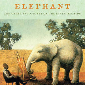 An_Audience_with_an_Elephant.jpg