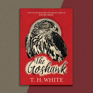 goshawk_webside-coverl.jpg