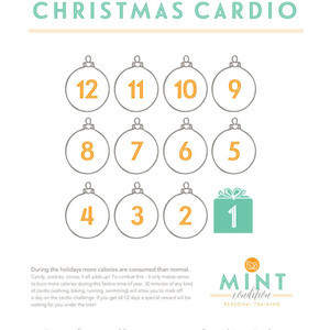 MINT-CONDITION-12DaysofChristmas.jpg
