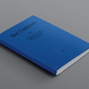Fluorink_Aurelio_Sanchez_Biel_Capllonch_catalogue_cover_isometric.jpg
