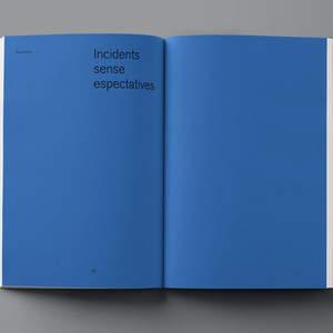 Fluorink_Aurelio_Sanchez_Biel_Capllonch_catalogue_61.jpg