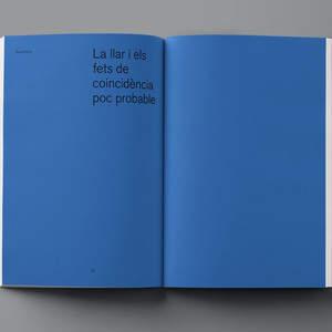 Fluorink_Aurelio_Sanchez_Biel_Capllonch_catalogue_43.jpg