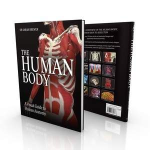 Human_Body_Cover_Render.jpg