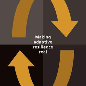 making-adaptive-resilience-real-1.jpg
