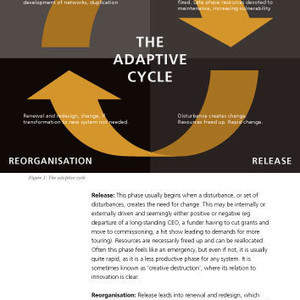 making-adaptive-resilience-real-19.jpg