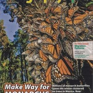 Monarchs_Cover.jpg