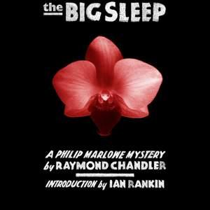 big_sleep.png