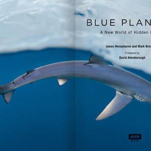 _BLUE_PLANET_II_1.jpg
