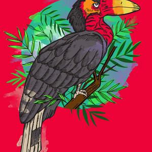 hornbill_textured_red_1600_c.jpg
