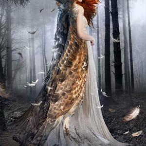 The_Hidden_Princess.jpg