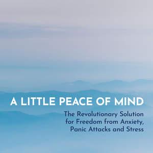 a_little_peace_of_mind.jpg