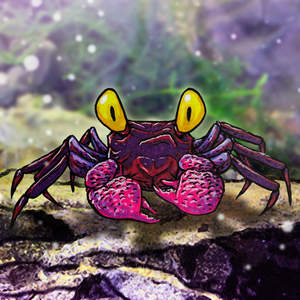 339-Cute-Cartoon-Purple-Vampire-Crab-with-Yellow-Eyes-Animal-Creature-Crustacean-Brush-Pen-Inked-Color-Markers-Drawing-Sketch-Illustration-pht01prppd3.jpg