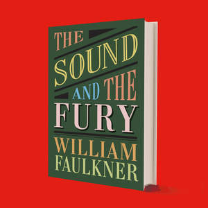 SOUND_and_FURY-BOOK.jpg